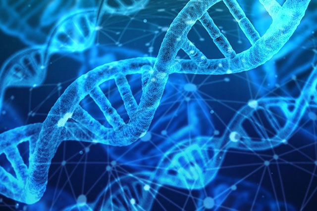 タンパク質 概論